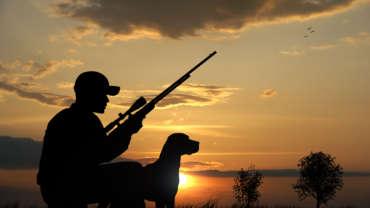 Охотничьи традиции Венгрии